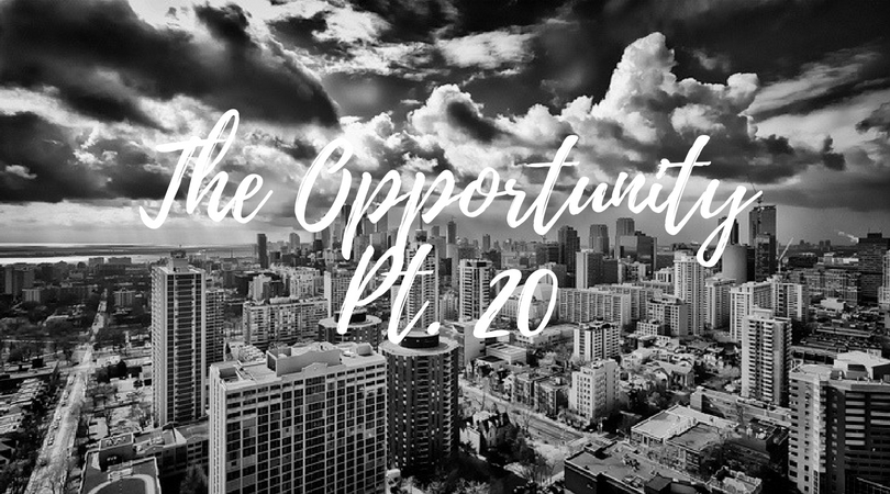 the opportunity - numb pt. 20